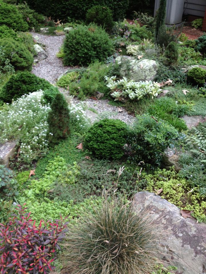 Miniature Plant and Rock Garden