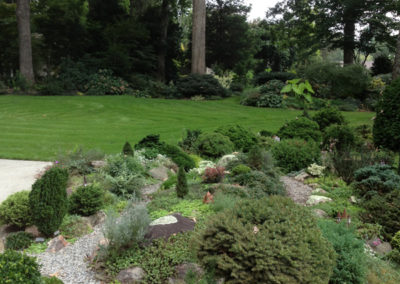 Rock Garden with Miniature Conifers